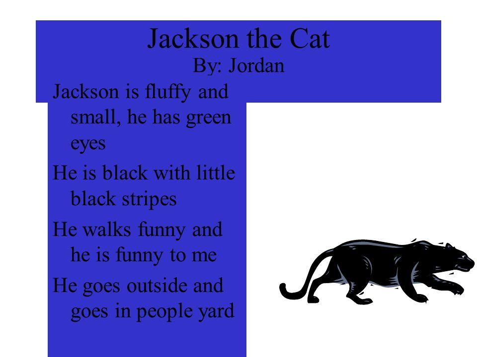 Jackson the Cat By: Jordan