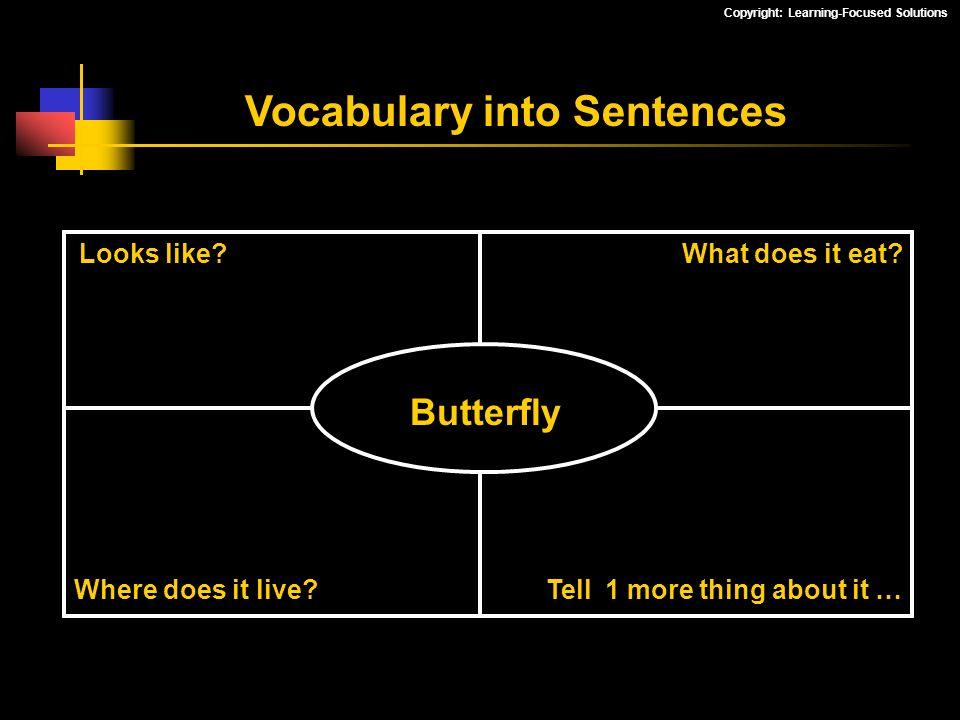 Vocabulary into Sentences