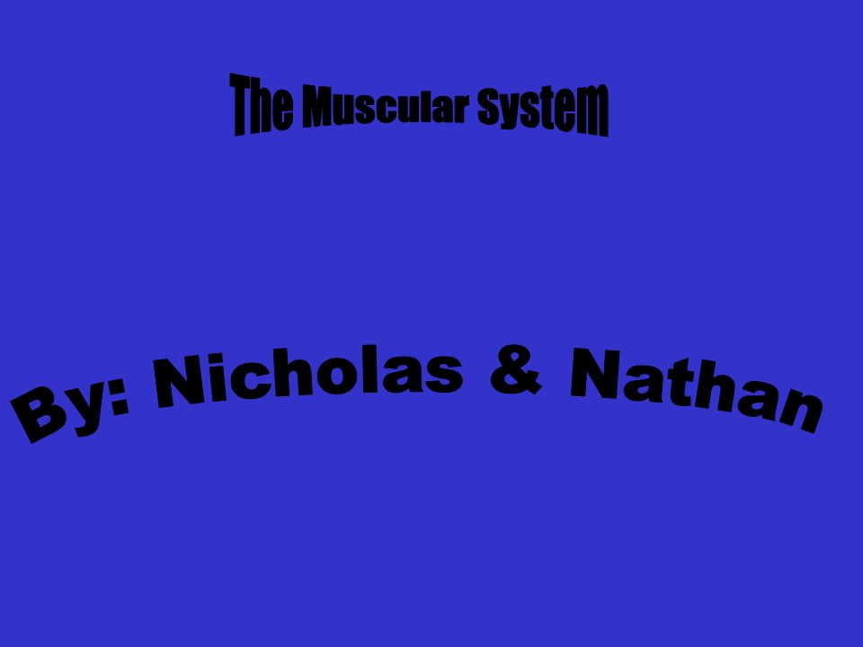 The Muscular System By: Nicholas & Nathan