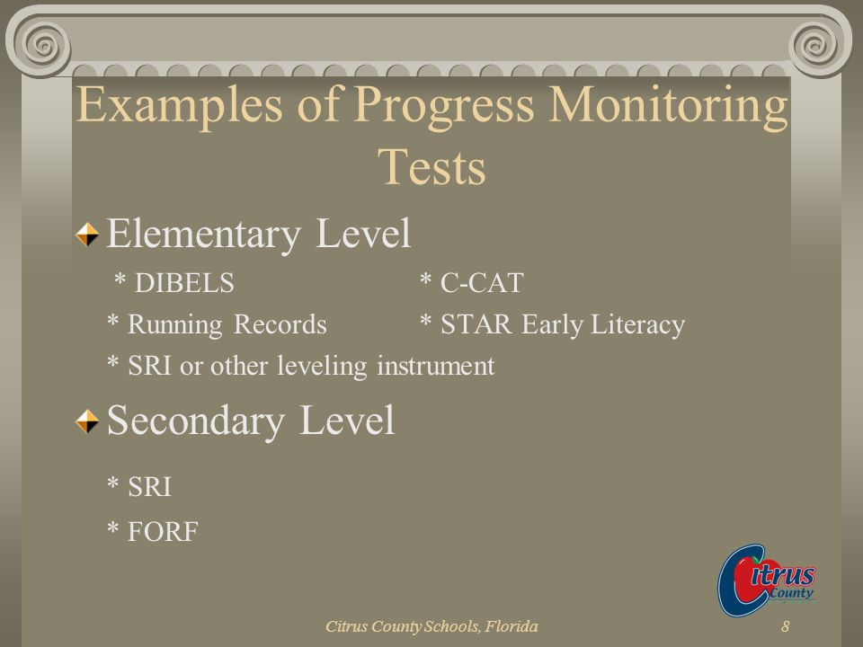 Examples of Progress Monitoring Tests