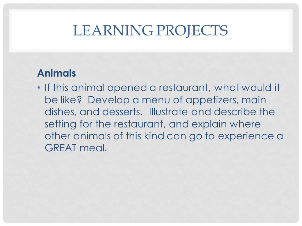 Learning Projects Animals