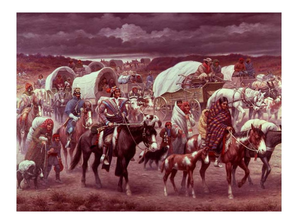 Students will usually comment on the amount of covered wagons, the horses, the Cherokee with the rifle.