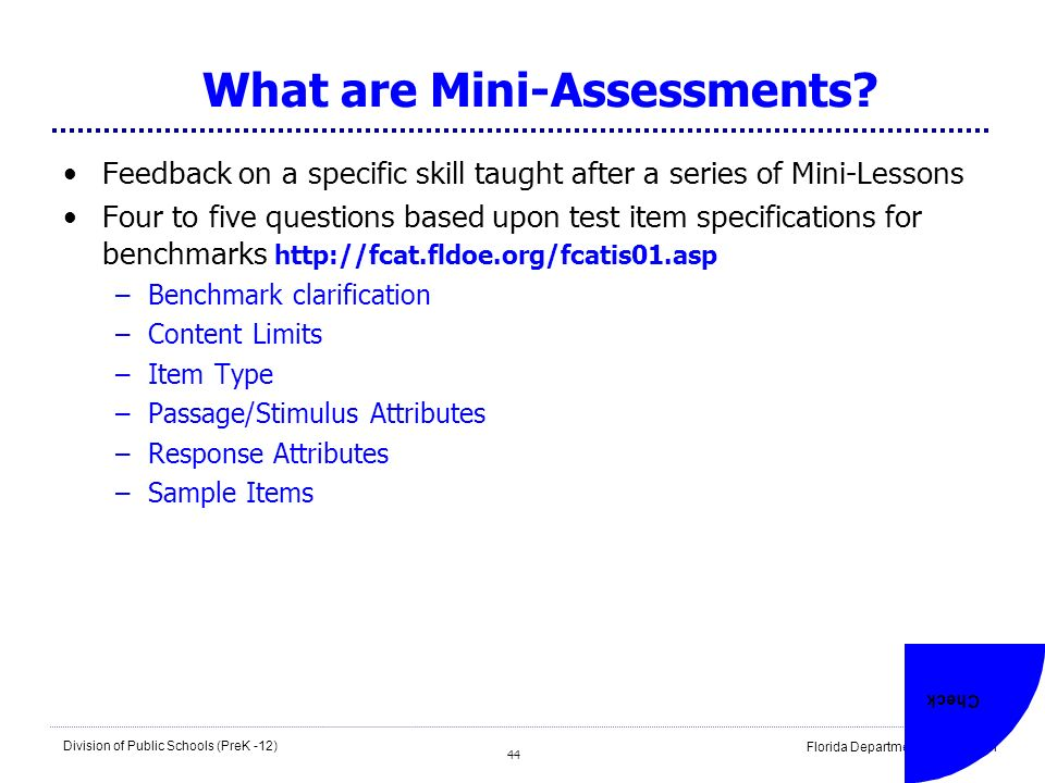 What are Mini-Assessments