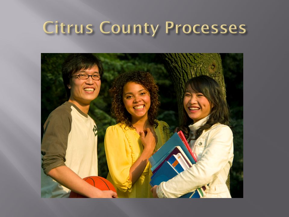 Citrus County Processes