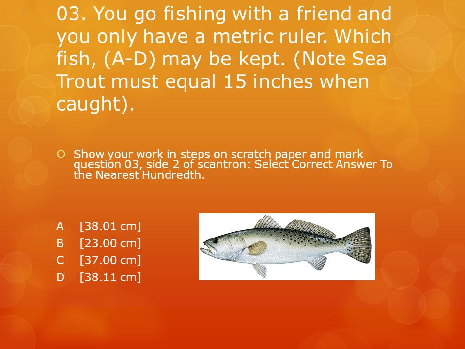 03. You go fishing with a friend and you only have a metric ruler