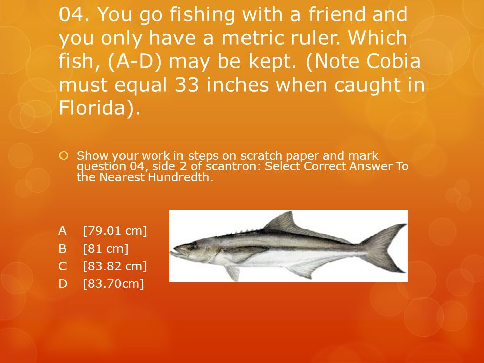 04. You go fishing with a friend and you only have a metric ruler