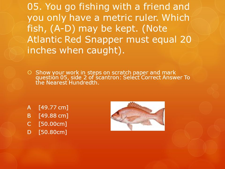 05. You go fishing with a friend and you only have a metric ruler