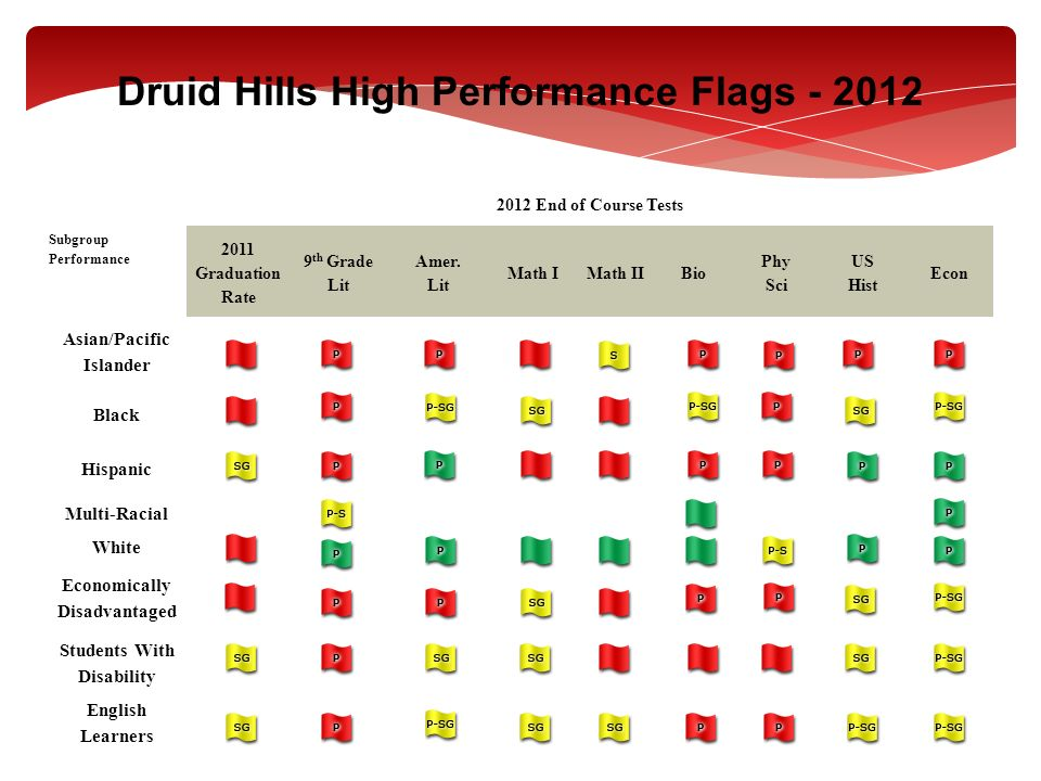Druid Hills High Performance Flags - 2012
