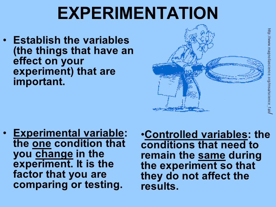 EXPERIMENTATION Establish the variables (the things that have an effect on your experiment) that are important.
