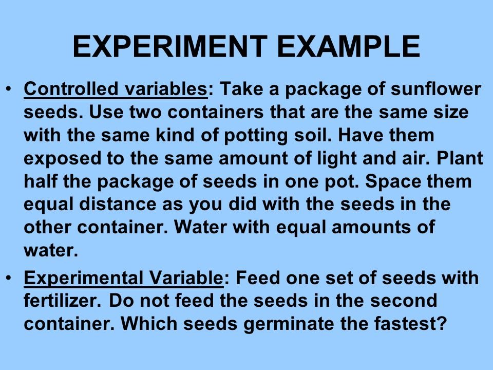 EXPERIMENT EXAMPLE