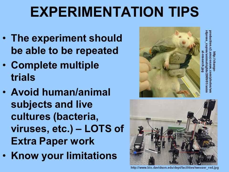 EXPERIMENTATION TIPS The experiment should be able to be repeated