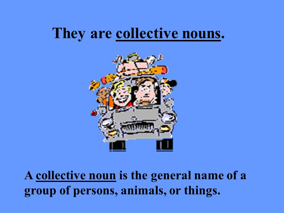 They are collective nouns.