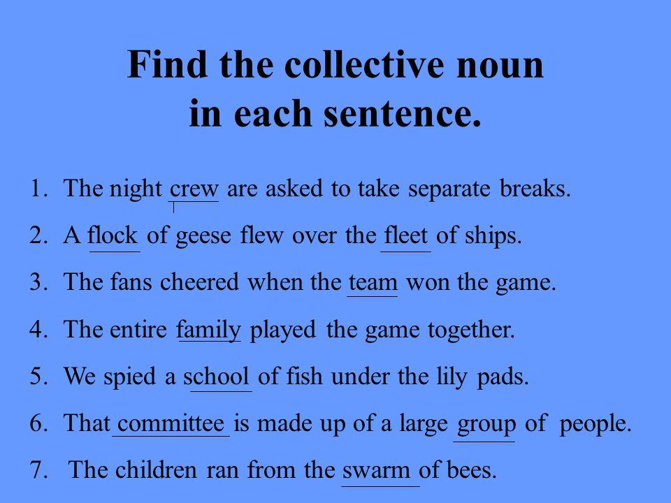 Find the collective noun in each sentence.