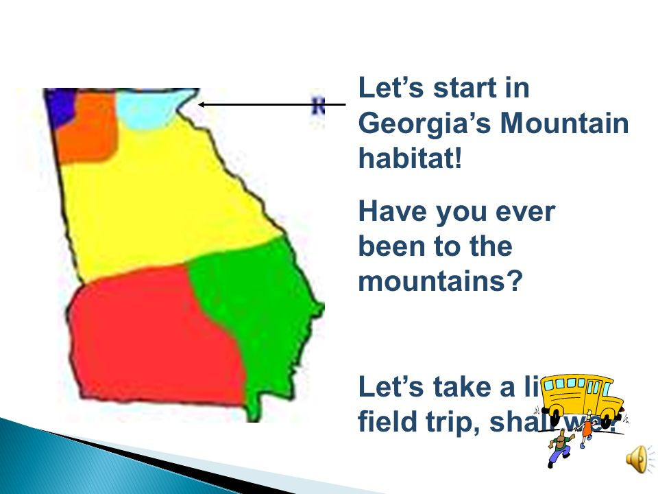 Let's start in Georgia's Mountain habitat!