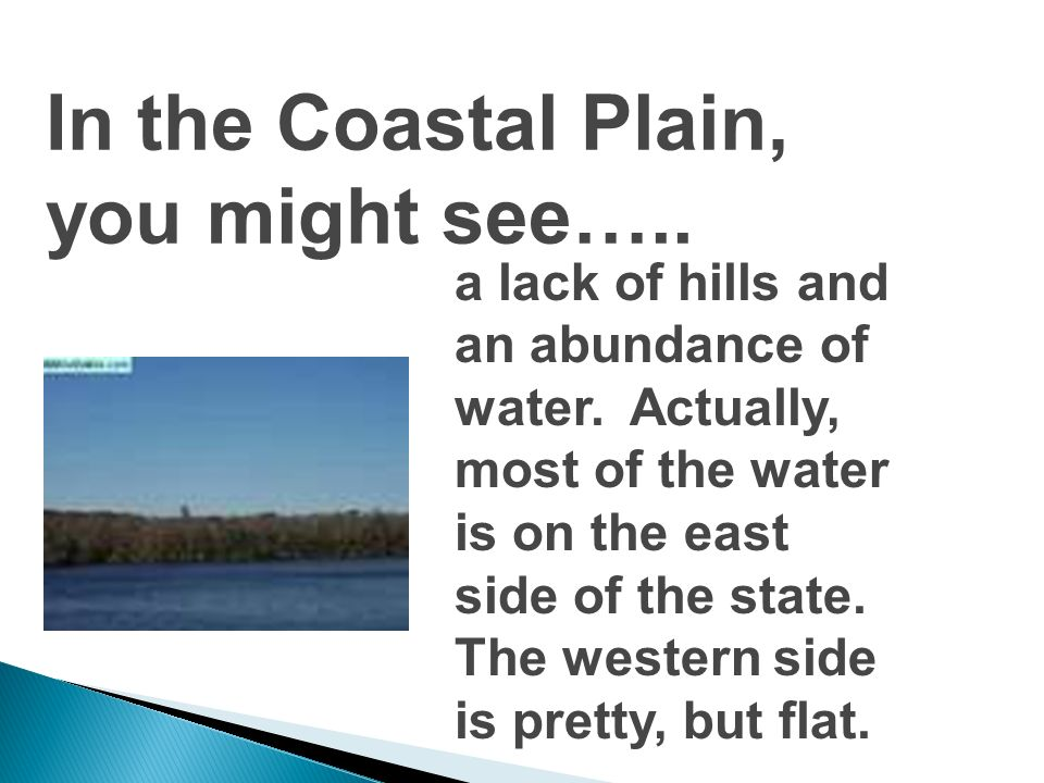 In the Coastal Plain, you might see…..