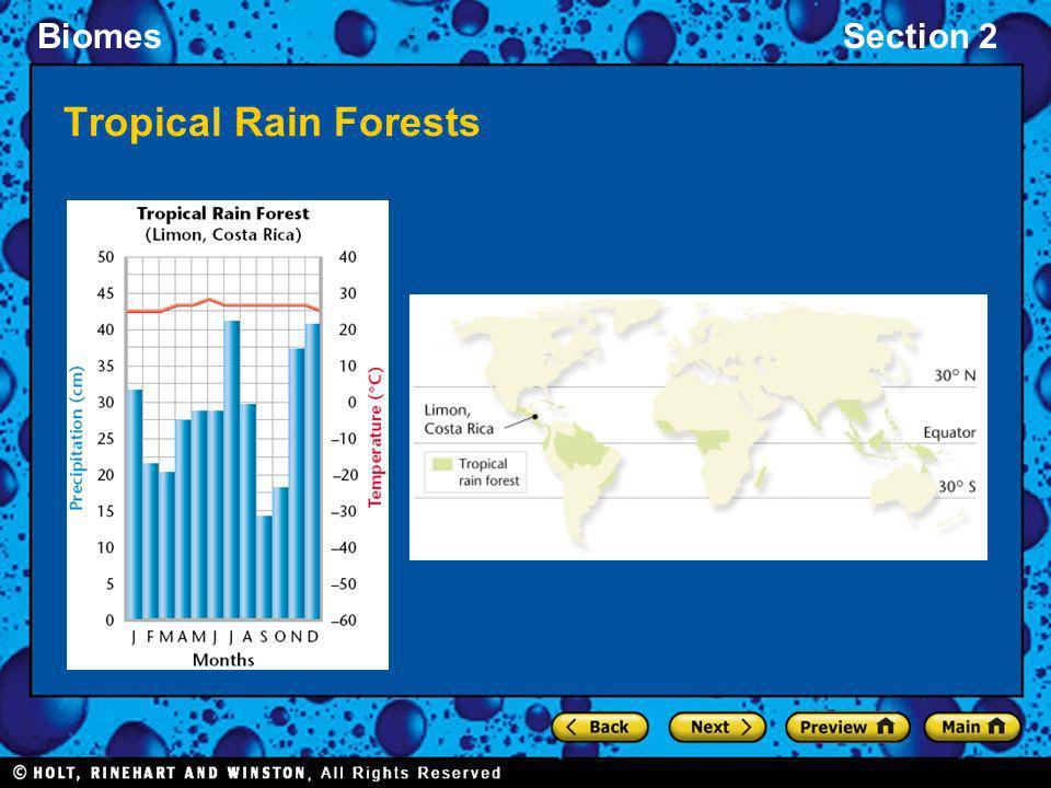 Tropical Rain Forests