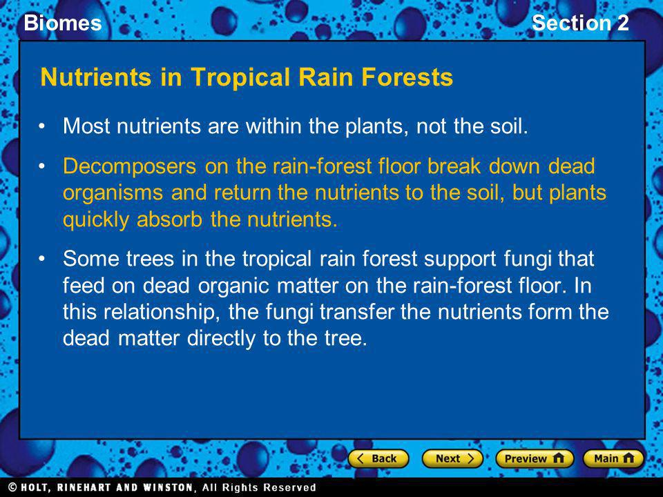 Nutrients in Tropical Rain Forests