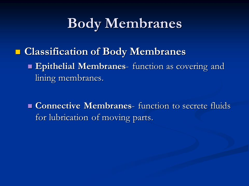 Body Membranes Classification of Body Membranes