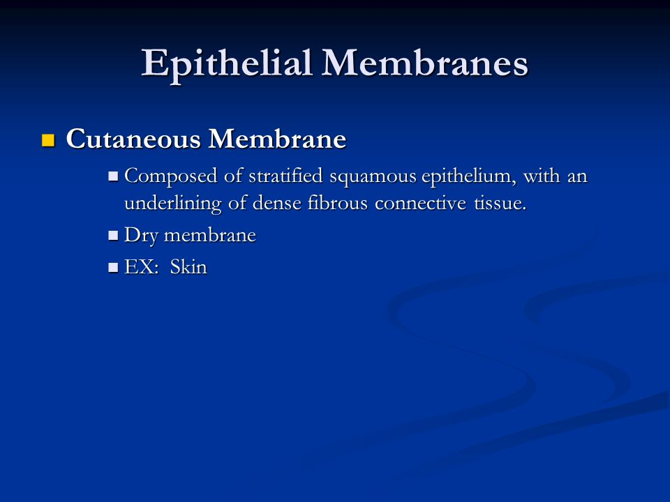 Epithelial Membranes Cutaneous Membrane