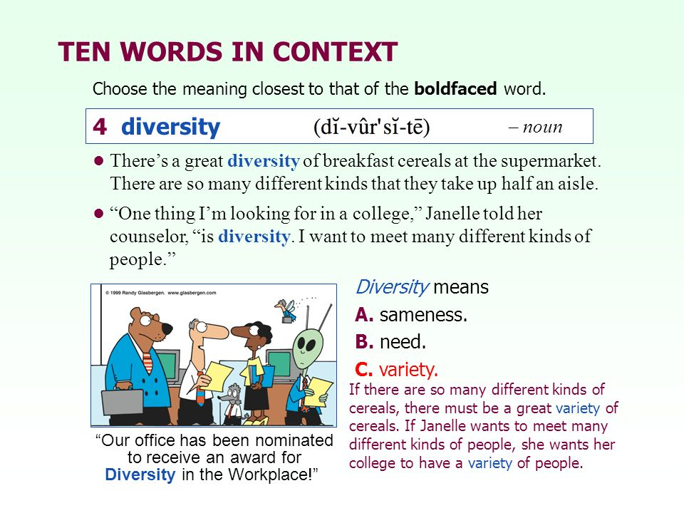TEN WORDS IN CONTEXT 4 diversity – noun