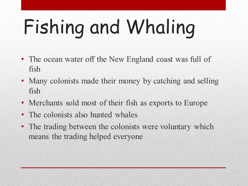 Fishing and Whaling The ocean water off the New England coast was full of fish. Many colonists made their money by catching and selling fish.