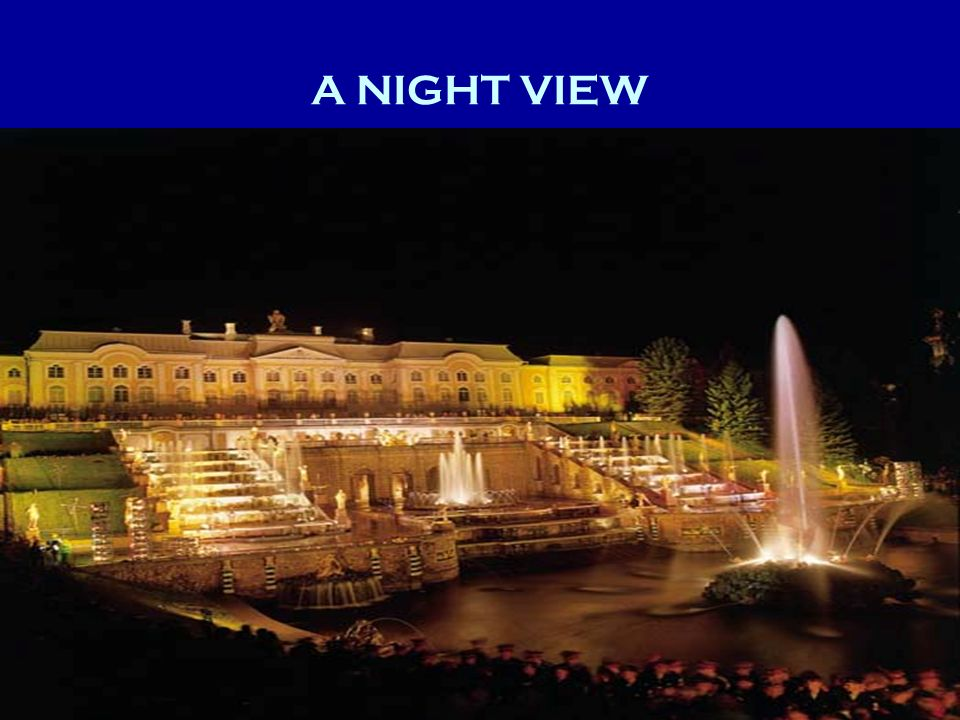 A NIGHT VIEW