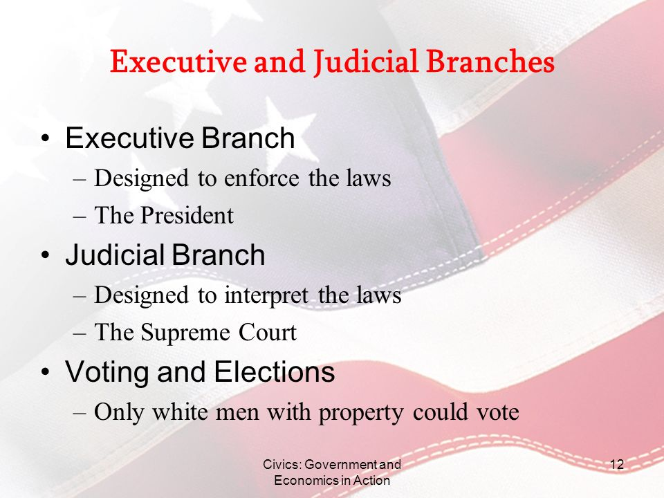Executive and Judicial Branches