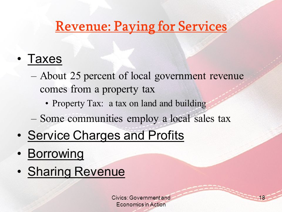 Revenue: Paying for Services