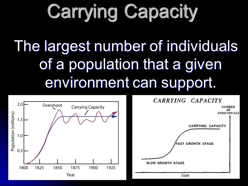 Carrying Capacity The largest number of individuals of a population that a given environment can support.