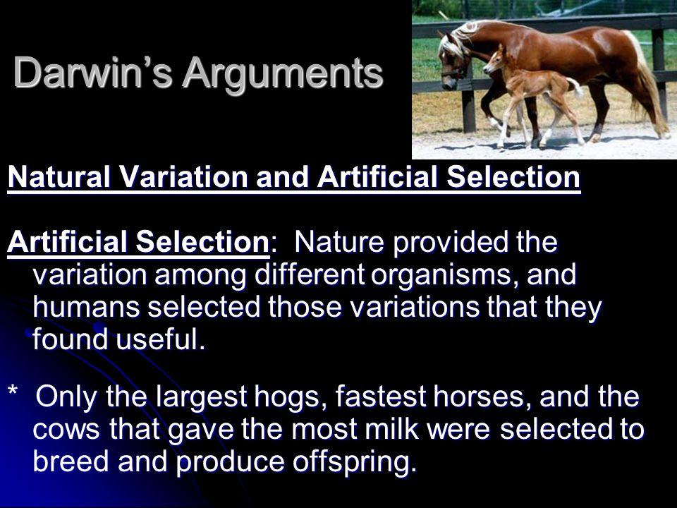 Darwin's Arguments Natural Variation and Artificial Selection
