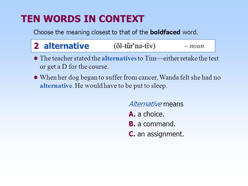 TEN WORDS IN CONTEXT 2 alternative – noun