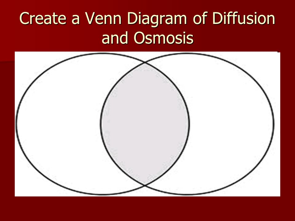 Create a Venn Diagram of Diffusion and Osmosis