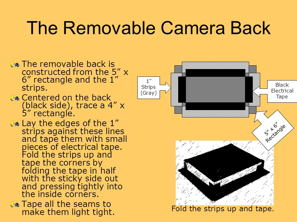 The Removable Camera Back