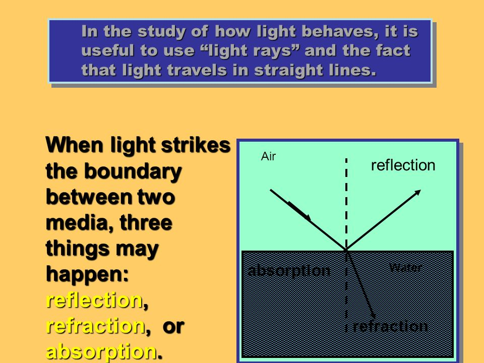 In the study of how light behaves, it is useful to use light rays and the fact that light travels in straight lines.