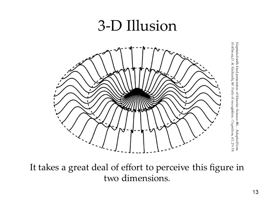 3-D IllusionReprinted with kind permission of Elsevier Science-NL. Adapted from.
