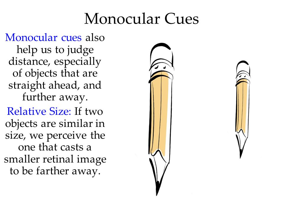Monocular Cues Monocular cues also help us to judge distance, especially of objects that are straight ahead, and further away.