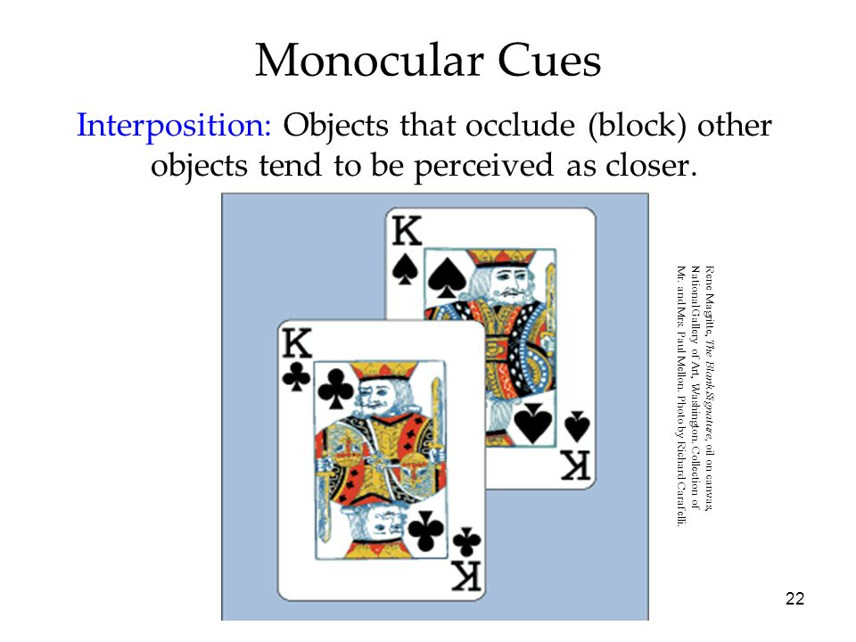 Monocular CuesInterposition: Objects that occlude (block) other objects tend to be perceived as closer.