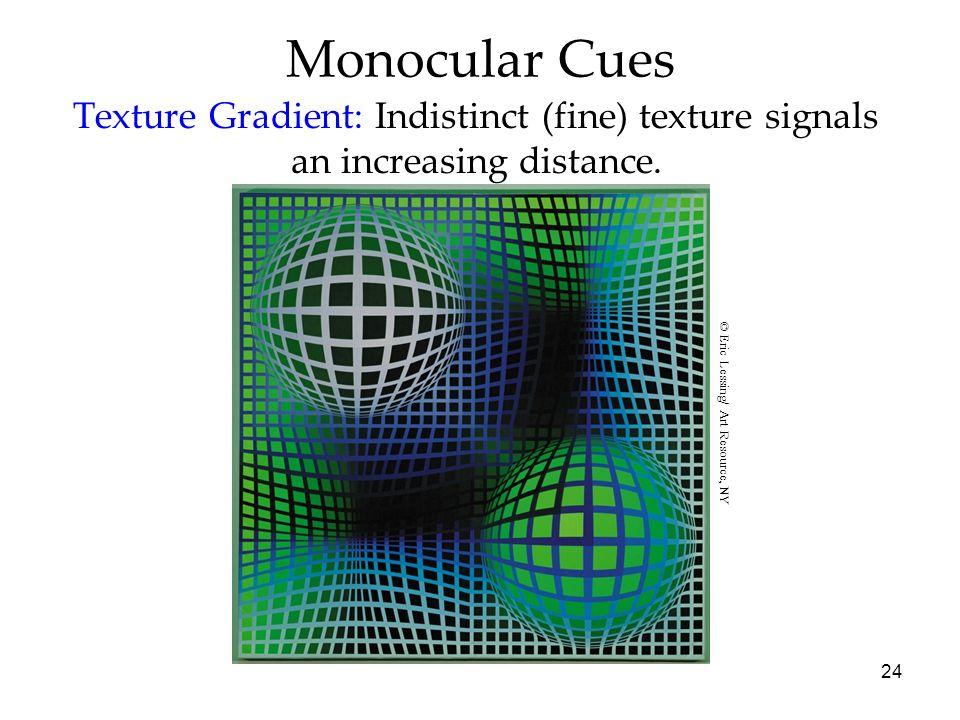 Monocular CuesTexture Gradient: Indistinct (fine) texture signals an increasing distance.