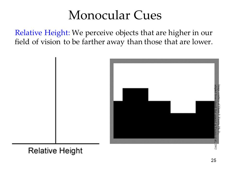 Monocular CuesRelative Height: We perceive objects that are higher in our field of vision to be farther away than those that are lower.