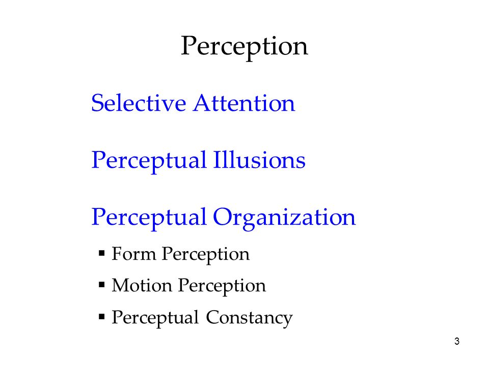 Perception Selective Attention Perceptual Illusions