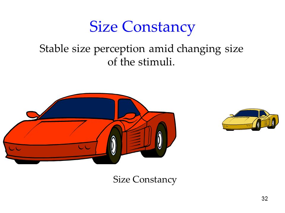 Stable size perception amid changing size of the stimuli.