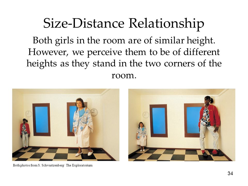 size distance relationship perception and attention