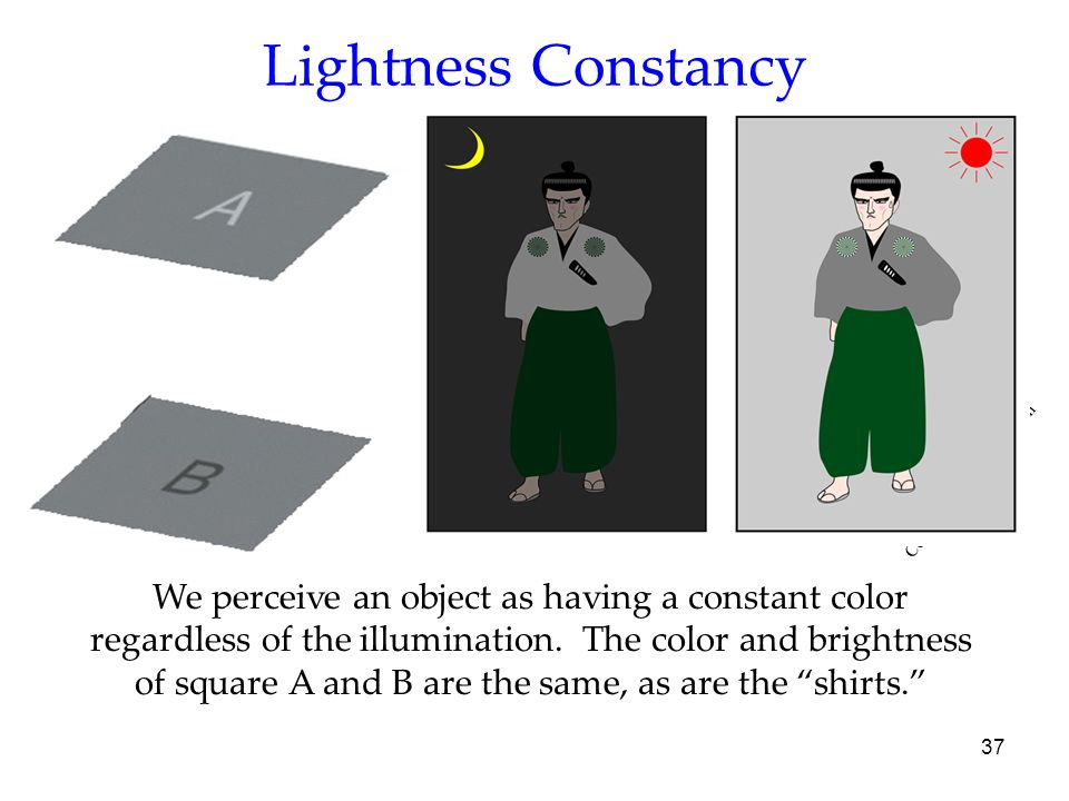 Lightness Constancy Courtesy Edward Adelson. OBJECTIVE 11| Discuss lightness constancy and its similarity to color constancy.