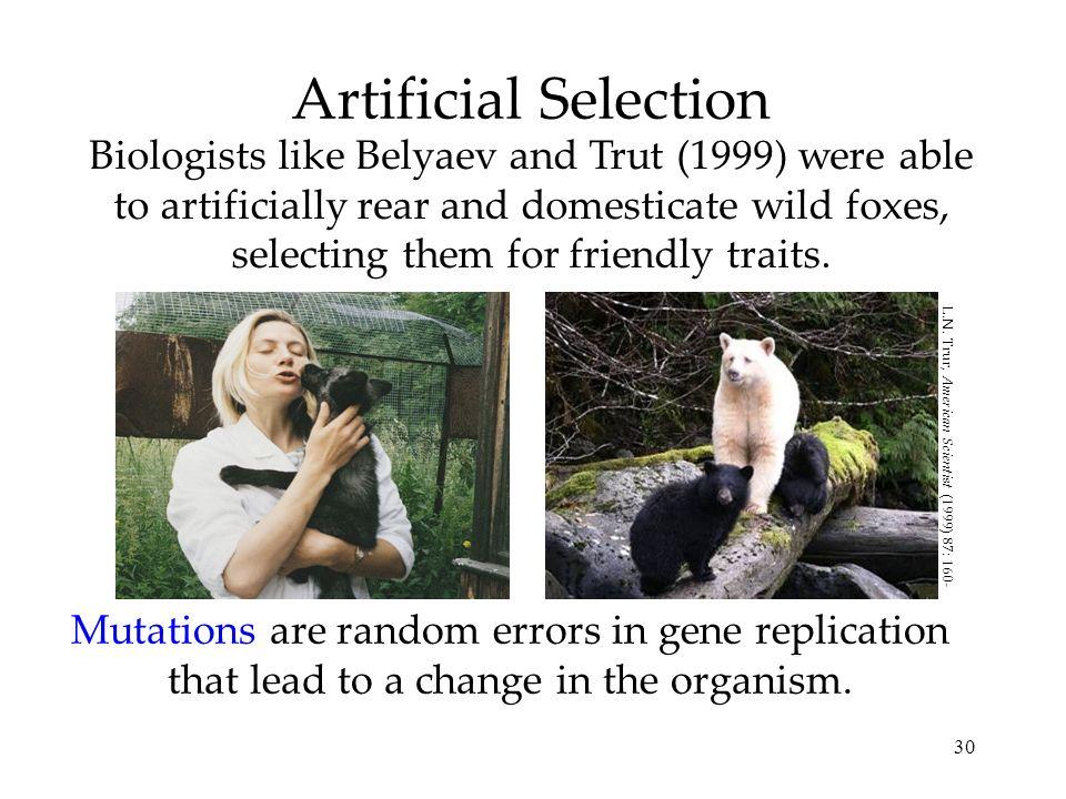 L.N. Trur, American Scientist (1999) 87: 160-169