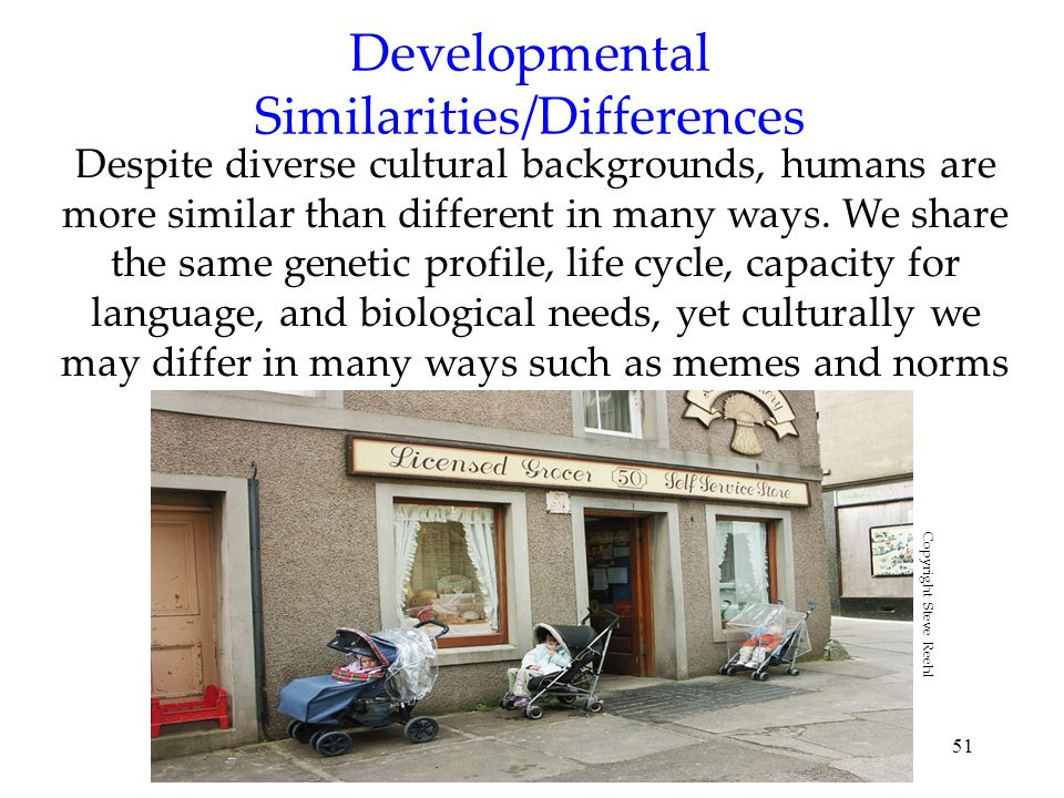 Developmental Similarities/Differences