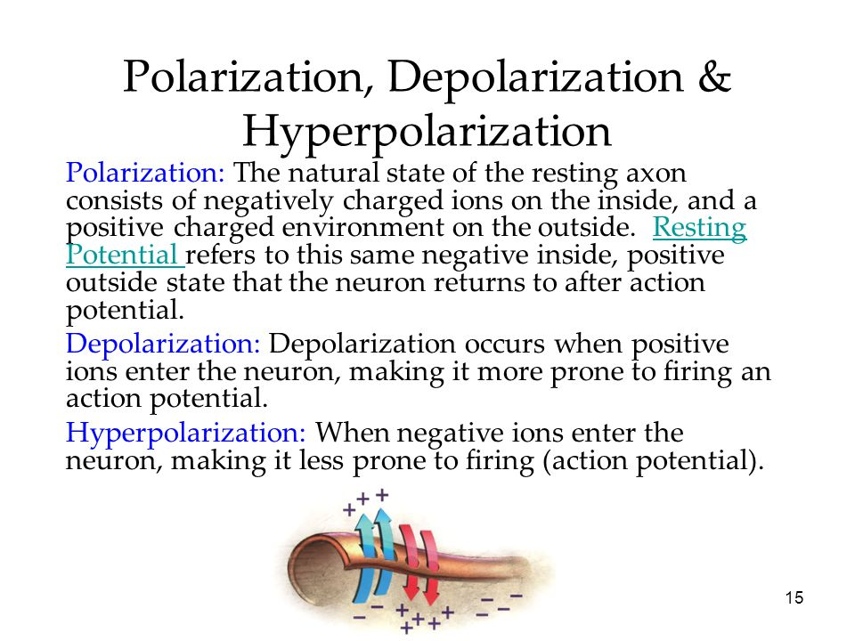 Polarization, Depolarization & Hyperpolarization