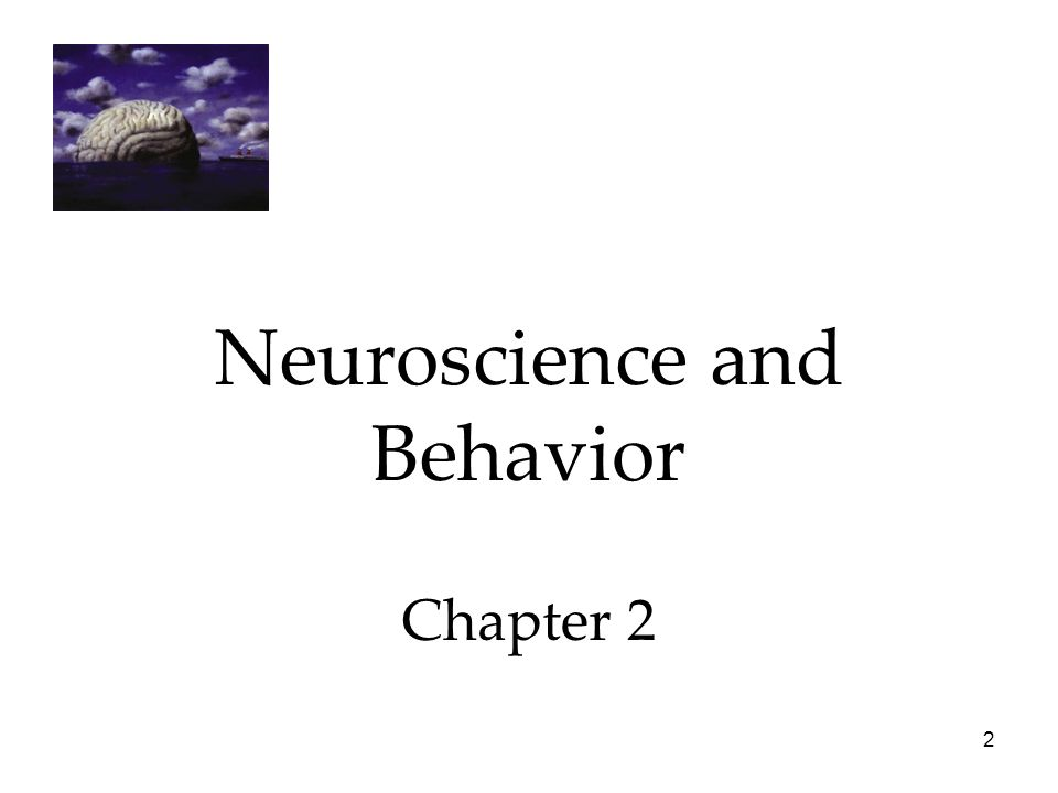 Neuroscience and Behavior Chapter 2