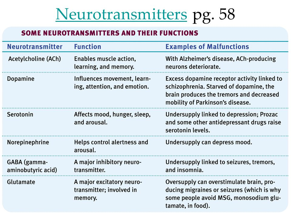 Neurotransmitters pg. 58