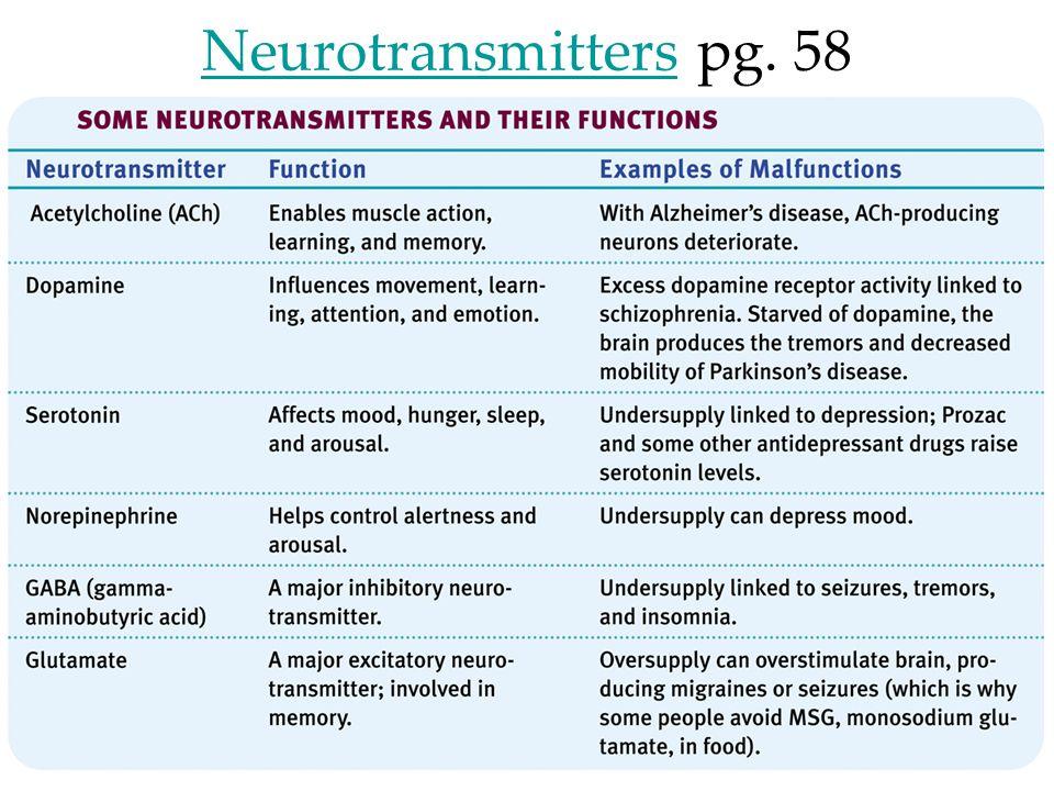Neurotransmitters pg. 58