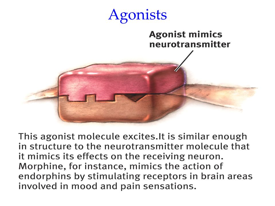Agonists